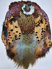 Full Ringneck Pheasant Skin For Fly Tying No Head/Crest Nimrod's Tackle