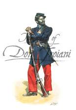 """1st South Carolina Volunteer Infantry - American Civil War"" - Don Troiani"