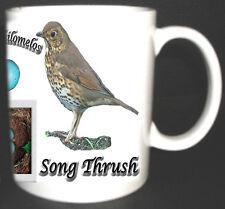 SONG THRUSH GARDEN BIRD MUG LIMITED EDITION XMAS GIFT