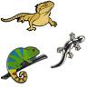 Figuras de Animales Pin de Solapa Pin Reptiles de Metal Selección