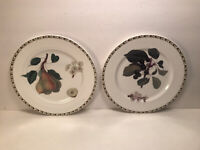 2 QUEEN'S FINE BONE CHINA ''THE ROYAL HORITICULTURE SOCIETY'' HOOKERS FRUIT SALA