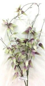"Smilax Weeping Spray Stem~Lavender,  Green~40""~Silk/Artificial"