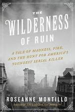 The Wilderness of Ruin : A Tale of Madness, Boston's Great Fire~ Hard Cover NEW