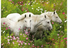 Ravensburger Horses In A Field 300 XXL piece Jigsaw Puzzle