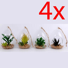 Cactus Glass Dried & Artificial Flowers