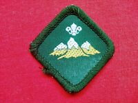 VINTAGE - MOUNTAINEER - SCOUT BADGE - NEW