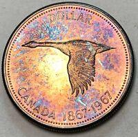1967 CANADA SILVER DOLLAR GOOSE UNC COLOR GEM CHOICE BU MONSTER TONED (DR)