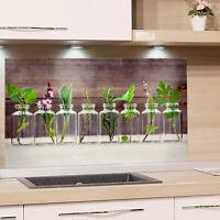 Küchenrückwand Glas ESG Motiv Käuter Spritzschutz Küche Herd Fliesenspiegel