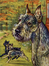 SCHNAUZER CHARMING DOG GREETINGS NOTE CARD DOG IN SCENIC SETTING