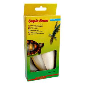 Lucky Reptile Bio Calcium Sepia Bone (2-pack) Cuttlefish Cuttlebone