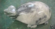 F Gorgeous Granite Rock Turtle Paperweight Paper weight