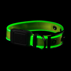 Nite Ize Dog Collar Light 1.5 in. Impact Resistant Waterproof Rechargeable LED