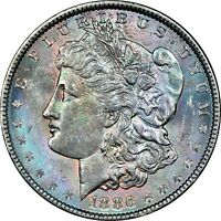 1886-P USA MORGAN SILVER DOLLAR NGC MS63 BU TONED GEM UNC COLOR CHOICE #23 (DR)