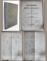 Leuckart Bau und Entwicklungsgeschichte der Pentastomen 1860 Biologie Insekten