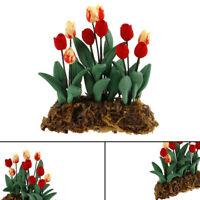 1Pc 1:12 Dollhouse Miniature Garden Ornament Tulips Green Plant Flower Gar ft BR