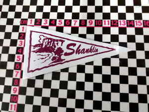 Vintage Style Shanklin Isle of Wight Holiday Pennant Classic Car Window Sticker