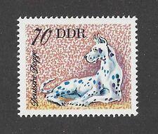 Dog Art Body Postage Stamp Harlequin GREAT DANE DDR East Germany 1976 MNH