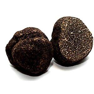 Black Autumn Truffles: Fresh 100g (UK only!)
