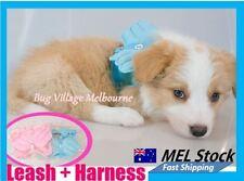 Handmade Dog Leashes