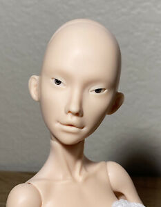 CHIMERA FOX DOLL RECAST Bjd 1/4 Fashion Popovy