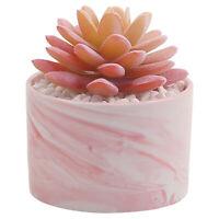 Artificial Flowers with Ceramic Pot Desk Ornament Succulent Plant Decor Bonsai