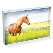 "Beautiful Brown Horse Photo Block 6 x 4"" - Desk Office Art Cool Gift #8395"
