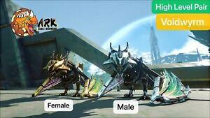 ark pc pve Gen 2 High Level Voidwyrm Male/Female Void Wyvern (Clone)