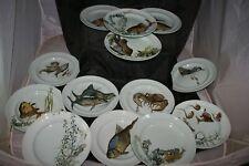 13 assiettes plates XIXème mintons aesthetic movement aquarium fish