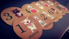 Pitbulls Monthly baby stickers. Bodysuit month stickers. Dogs themed puppies