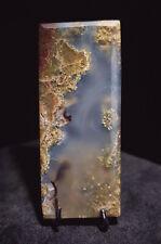 LF Plume Moss Cabochon aka Picture / Suiseki stone 35x17x3mm
