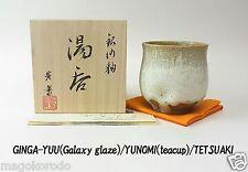 o5915,Japanese,TETSUAKI NAKAO, a Galaxy glaze teacup.