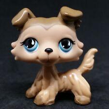 Littlest Pet Shop #893 LPS Brown Collie Dog Blue Eyes / Chien