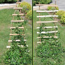 Growth Support Wood Trellis Climbing Fence Plug Flowers Plants Aid Grid