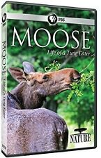 Nature: Moose - Life Of A Twig Eater (2016, Dvd Neuf)