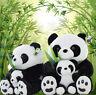 "12""(31cm) PANDA Bears Mom & Baby Stuffed Animal Plush Soft Toy w/ Silk Bamboo"