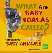 What Are Baby Koalas Called?: A Book about Baby An