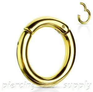 Large Gauge Hinged Seamless Segment Ring Surgical Steel Earring Septum Clicker