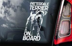 PATTERDALE TERRIER Car Sticker, Dog Window Bumper Decal Gift Pet - V01