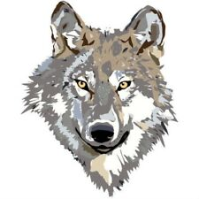 WHITE WOLF WOLFS HEAD IRON ON T SHIRT TRANSFER LARGE A4 SIZE