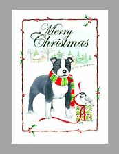 Staffordshire Bull Terrier Dog Christmas Cards, Boxed, 16 Cards & 16 Envelopes