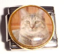 Gato Gris encanto italiano Rayas-se adapta a 9 mm Arrancador Pulseras I Love Mis Mascotas Meow
