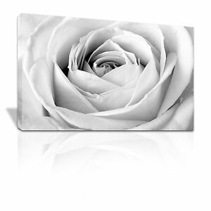 Close up of the center of a black and white Rose Floral canvas print - C120