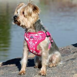 Doggie Design Wrap and Snap Choke Free Dog Harness - Pink Hibiscus