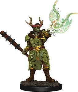 Adventurers Pathfinder Battles: Half-Orc Druid Male - Premium Painted Figure