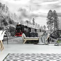 VLIES   Fototapete XXL Dampflokomotive Tapete Vliestapete 15F0365080