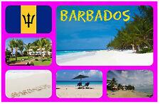 BARBADOS - SOUVENIR NOVELTY FRIDGE MAGNET - FLAGS / SIGHTS - BRAND NEW / GIFT
