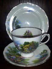 Vintage Royal Vale Cottage Garden China Trio. Cup,saucer & Side Plate. Teaset.