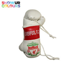 Liverpool Football Club Mini Boxing Gloves - Show Your Colours