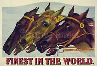 FINEST IN THE WORLD Vintage Horse Racing Poster Canvas Giclee Print 32x24 in.