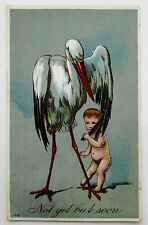 STORK & Shy BABY Not Yet But Soon Postcard EMB